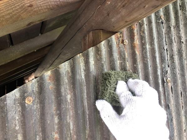大阪府寝屋川市 K様邸 屋根塗装、修理 倉庫 (10)