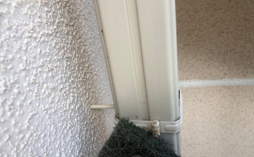 大阪府枚方市 I様邸 外壁塗装・付帯部塗装 破風板、ケラバ、鼻隠しの違い 雨樋塗装 (7)